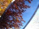 Is your interpretation causing your suffering? Photo taken through sunglasses